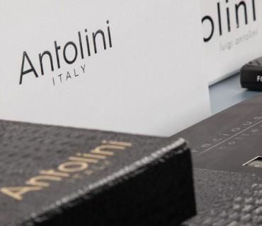 Antolini-header